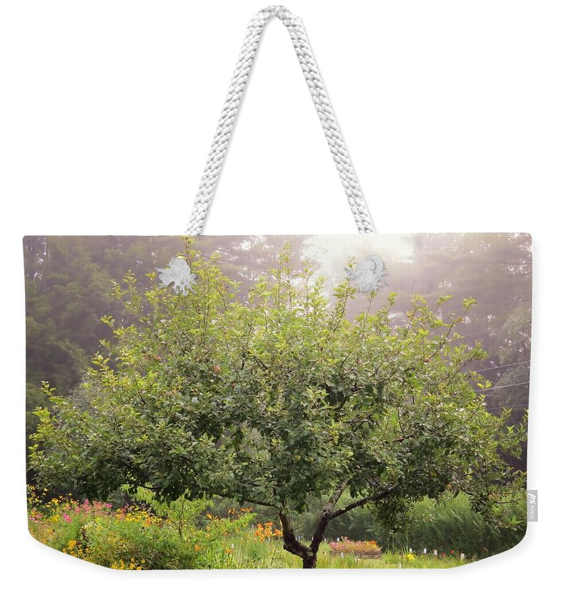 Weekender Tote Bag featuring the photograph Apple Tree In The Garden by MTBobbins Photography