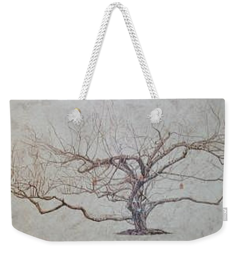 Apple Tree Weekender Tote Bag featuring the painting Apple Tree In Winter by Leah Tomaino