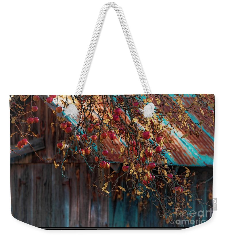 Apples Weekender Tote Bag featuring the photograph Apples by Sherman Perry
