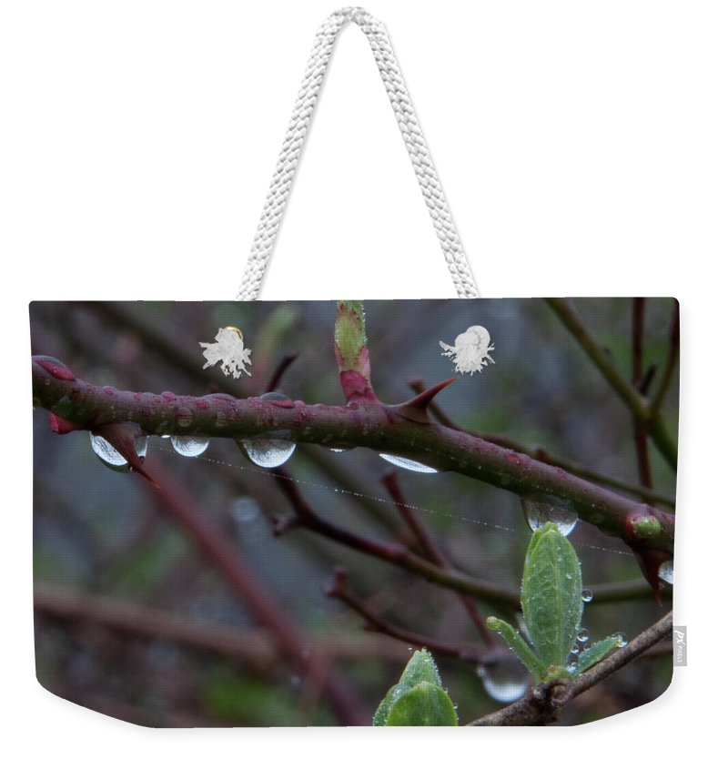 Photography Weekender Tote Bag featuring the photograph April Showers by Steven Natanson