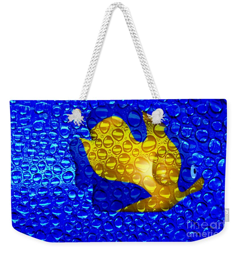 Clay Weekender Tote Bag featuring the photograph Aquarium by Clayton Bruster