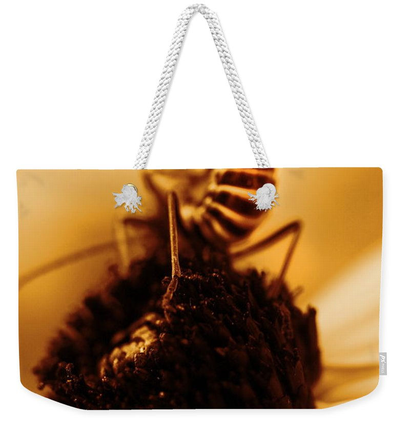 Black Eyed Susans Weekender Tote Bag featuring the photograph Arabesque - Gold by Angela Rath