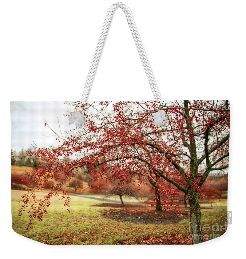 Weekender Tote Bag featuring the photograph Arboretum by Marcia Darby