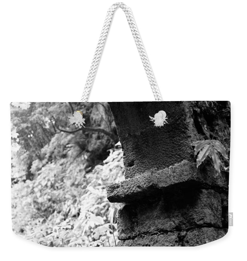 Arc Weekender Tote Bag featuring the photograph Arc by Gaspar Avila