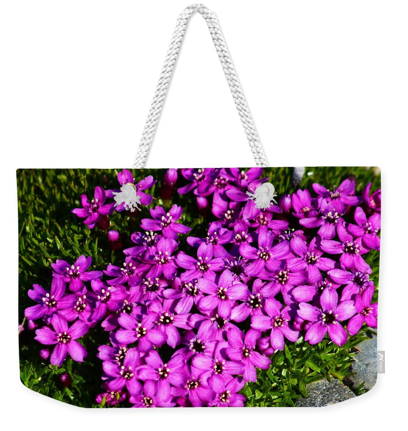 Arctic Weekender Tote Bag featuring the photograph Arctic Wild Flowers by Anthony Jones