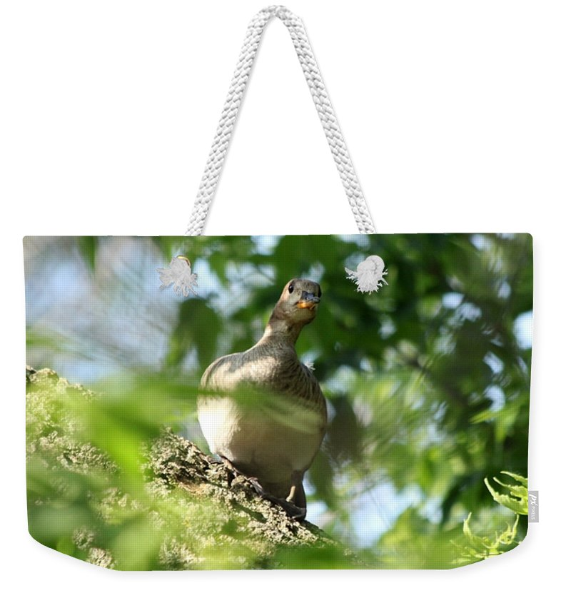 Immature Weekender Tote Bag featuring the photograph Are You There by Lori Tordsen