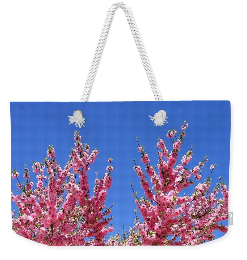 Arizona Weekender Tote Bag featuring the photograph Arizona 3 by Will Borden