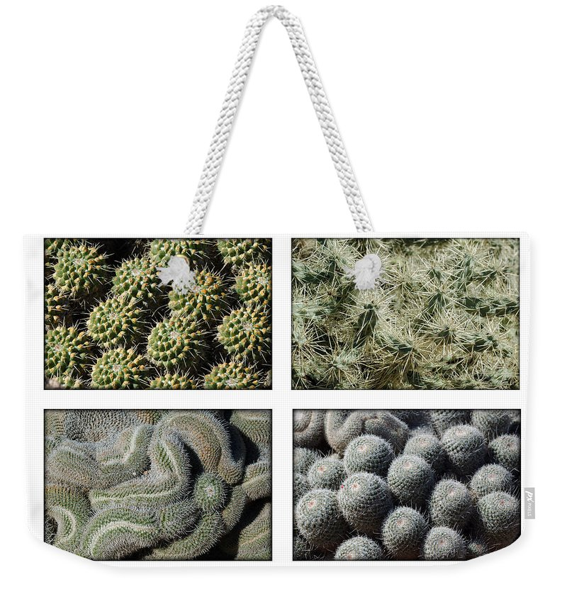 Cactus Weekender Tote Bag featuring the photograph Arizona Cacti by Jill Reger
