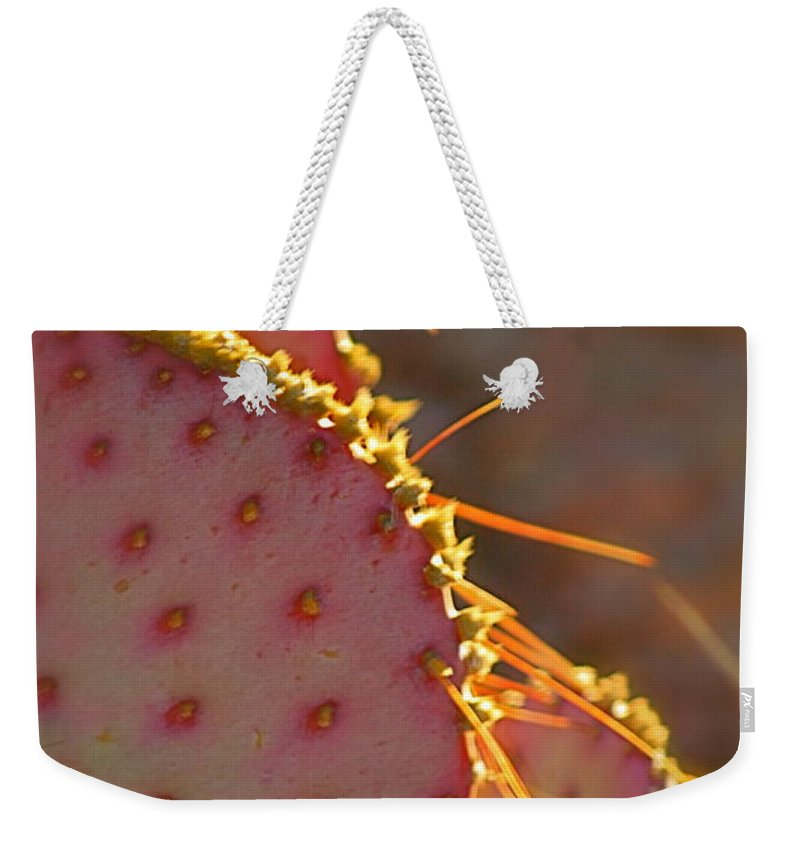 Cactus Weekender Tote Bag featuring the photograph Arizona Cacti by Nadine Rippelmeyer
