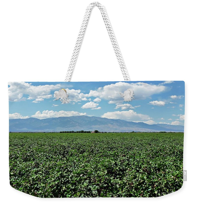 Arizona Cotton Field Weekender Tote Bag featuring the photograph Arizona Cotton Field by Methune Hively