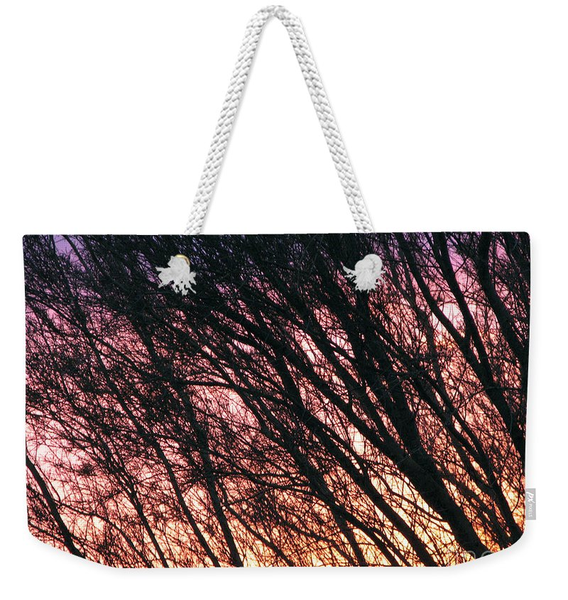 Arizona Weekender Tote Bag featuring the photograph Arizona Sunset by Stacey May