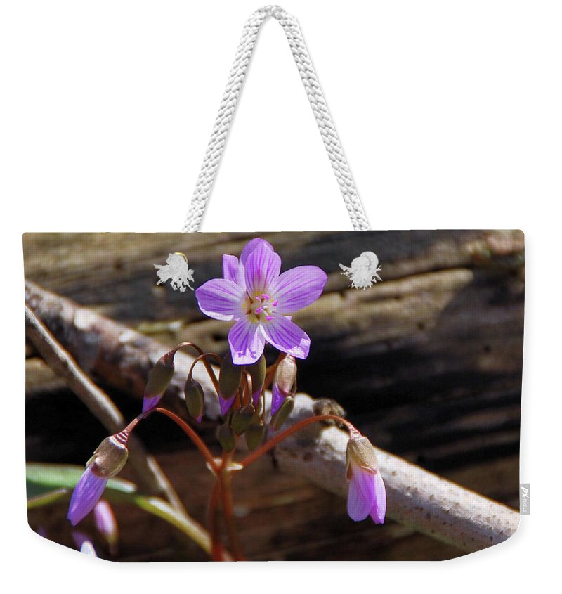 Flowers Weekender Tote Bag featuring the photograph Arms Widespread 1203 by Guy Whiteley