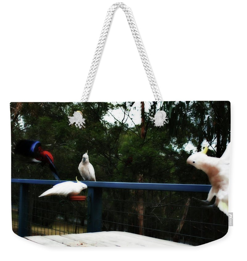 Parrots Weekender Tote Bag featuring the photograph Around The Dinner Table by Douglas Barnard