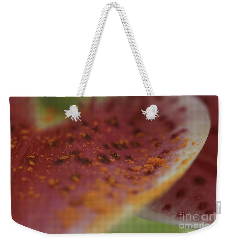 Lilly Weekender Tote Bag featuring the photograph Art In The Lilly by Deborah Benoit
