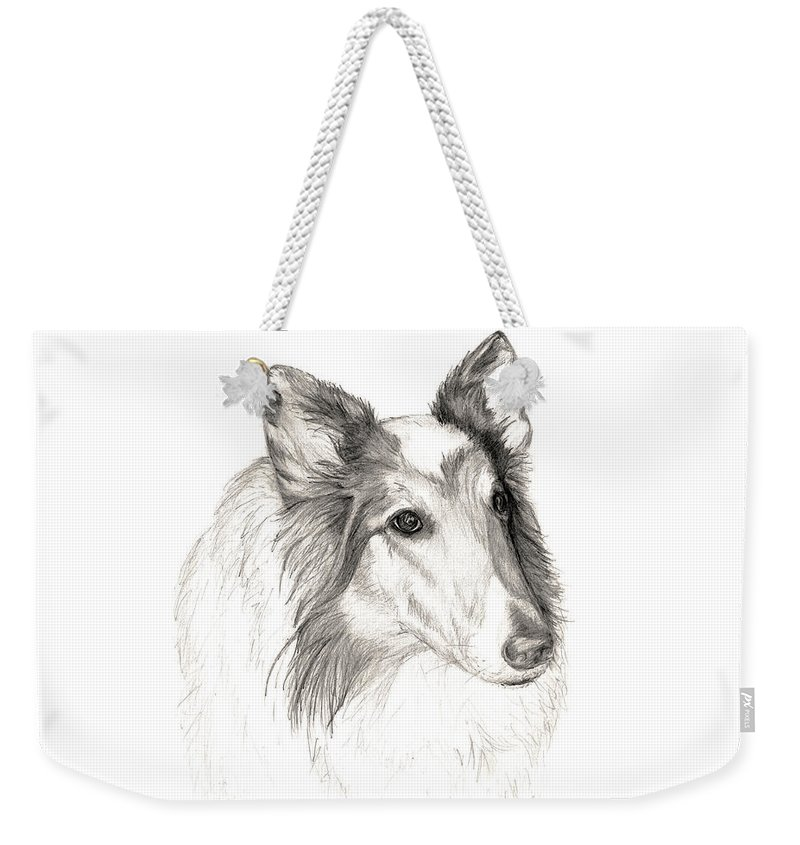 Remembering A Furry Friend Of 12 Years... Until We All Meet Again! Weekender Tote Bag featuring the drawing Remembering Maggie - A Tribute To A Collie by Stacey May