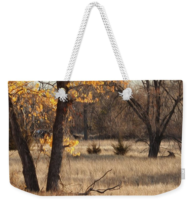 Bill Kesler Photography Weekender Tote Bag featuring the photograph Shades Of Autumn by Bill Kesler