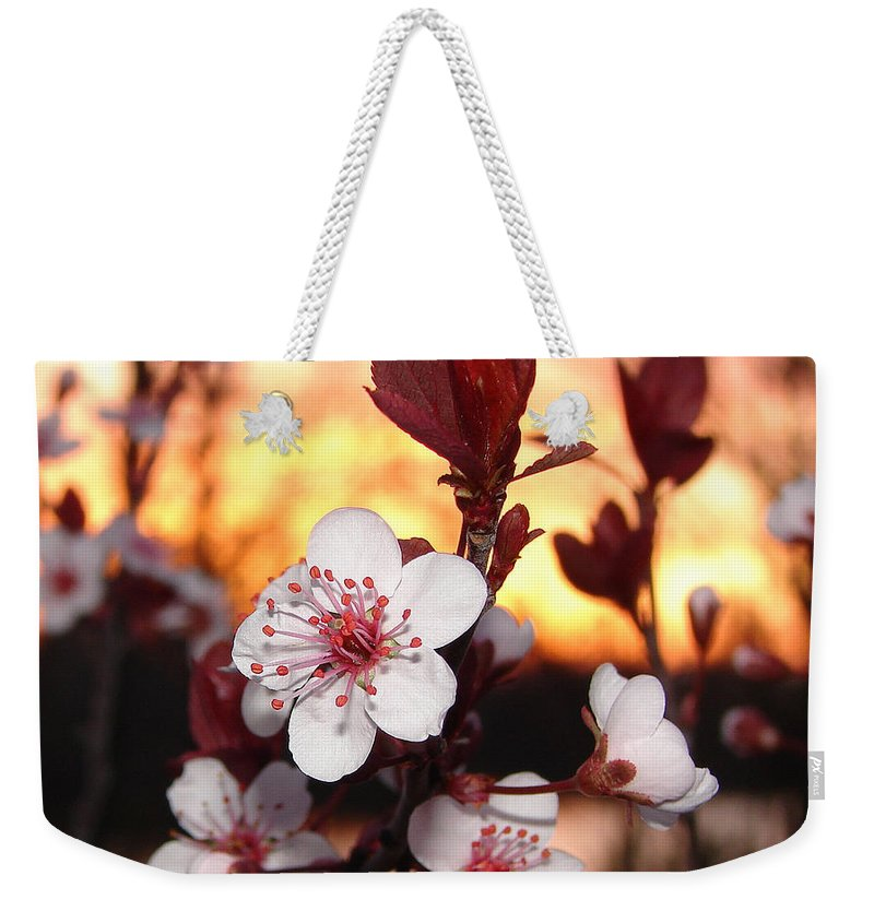 Weekender Tote Bag featuring the photograph As The Sun Sets by Luciana Seymour