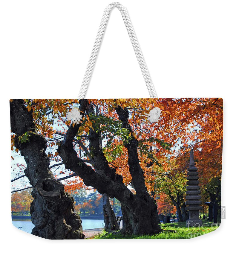 Cherry Weekender Tote Bag featuring the photograph Asian Cherry Trees Of Fall by Jost Houk