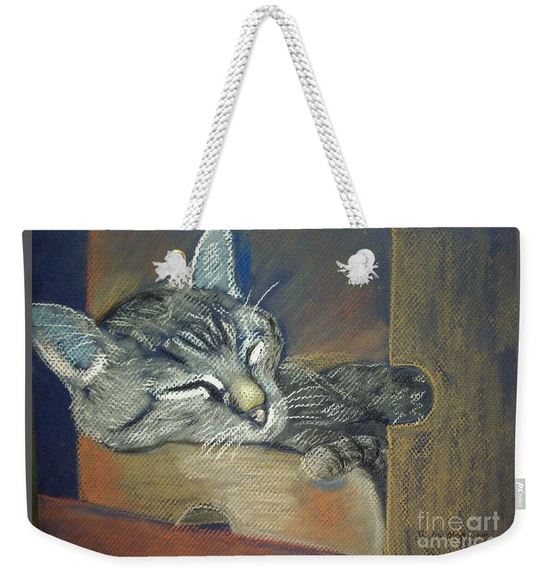 Cats Weekender Tote Bag featuring the pastel Asleep....in A Box by Sandra McClure