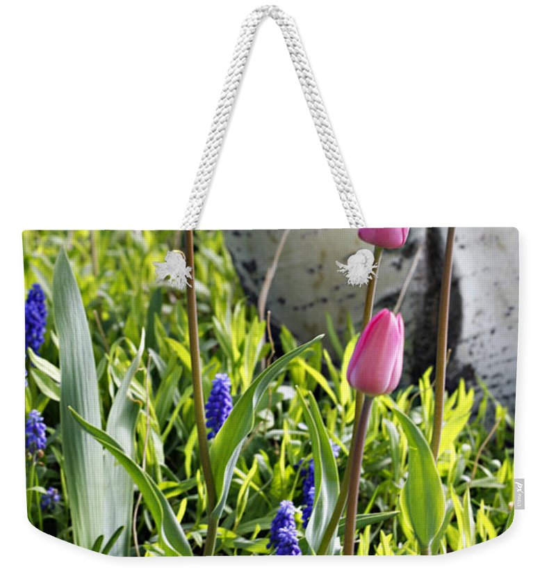 Aspen Weekender Tote Bag featuring the photograph Aspen And Tulips by Marilyn Hunt