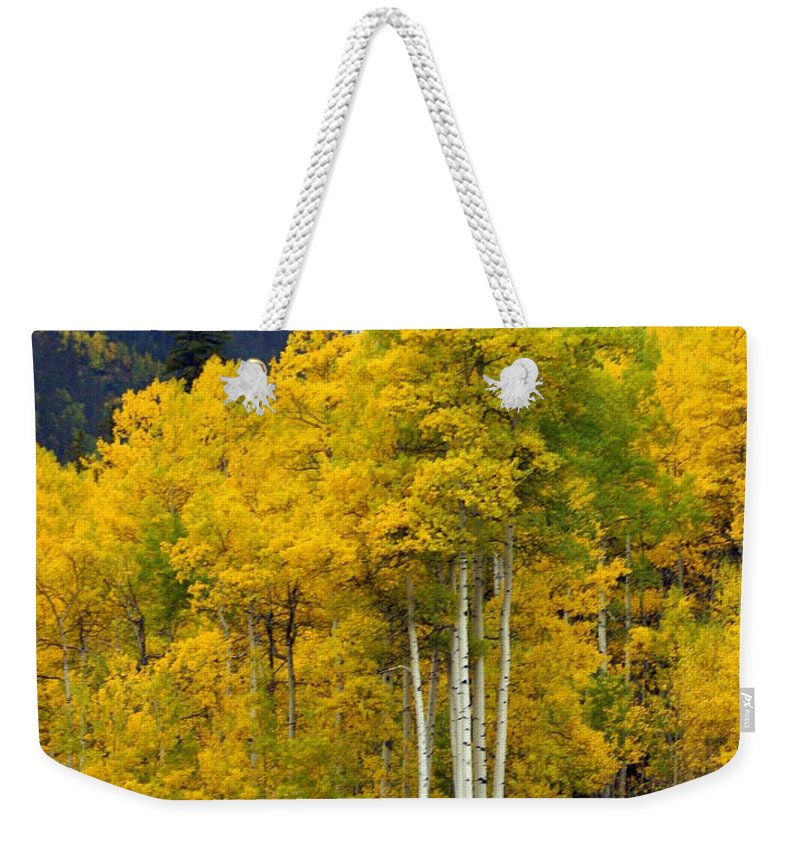 Fall Colors Weekender Tote Bag featuring the photograph Aspen Fall 3 by Marty Koch