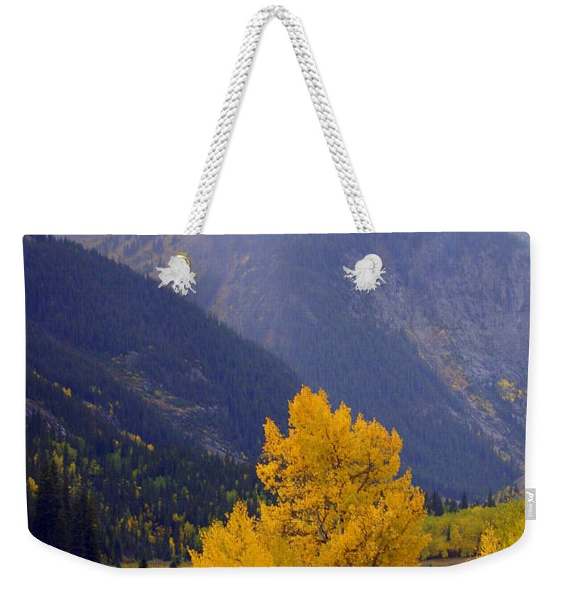 Fall Colors Weekender Tote Bag featuring the photograph Aspen Fall 4 by Marty Koch