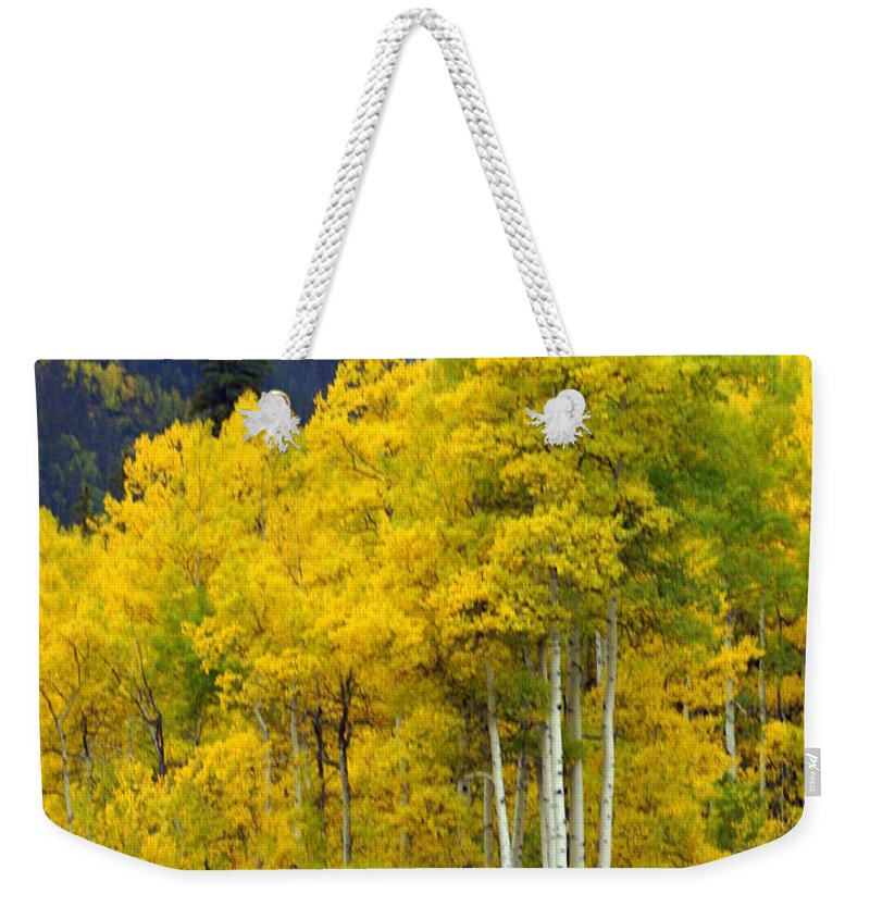 Fall Colors Weekender Tote Bag featuring the photograph Aspen Fall by Marty Koch