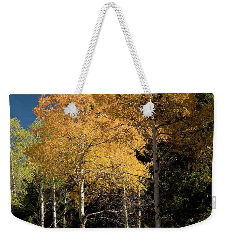 Grand Teton Weekender Tote Bag featuring the photograph Aspens And Sky by Steve Stuller