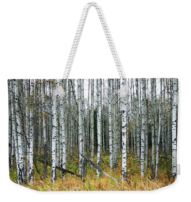 Aspens Weekender Tote Bag featuring the photograph Aspens by Nelson Strong