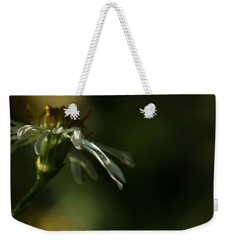Flower Weekender Tote Bag featuring the photograph Aster's Peripheral Ray by Linda Shafer