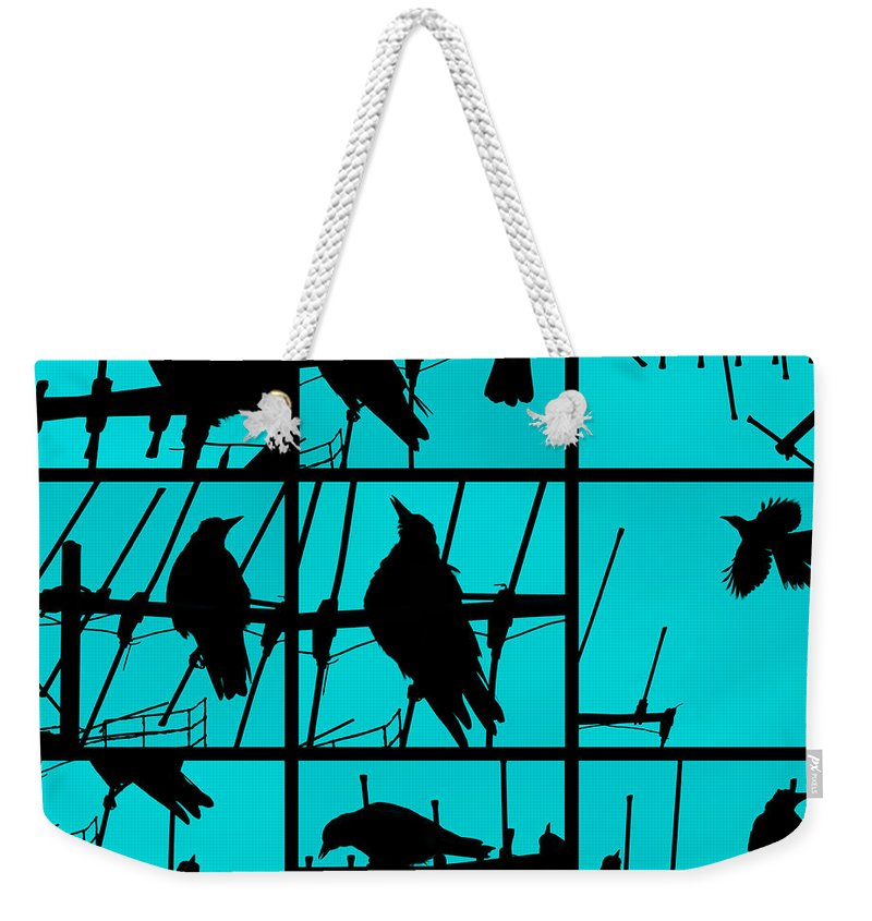 Birds Weekender Tote Bag featuring the photograph Asylum by Andrew Paranavitana