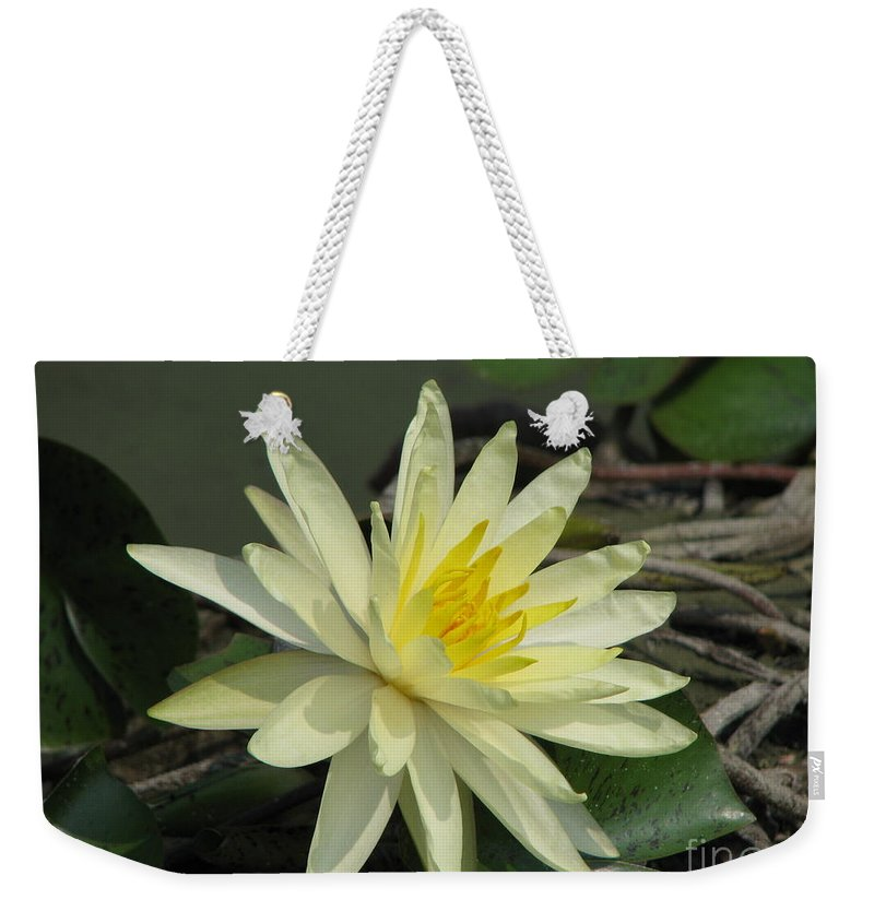 Lilly Weekender Tote Bag featuring the photograph At The Pond by Amanda Barcon