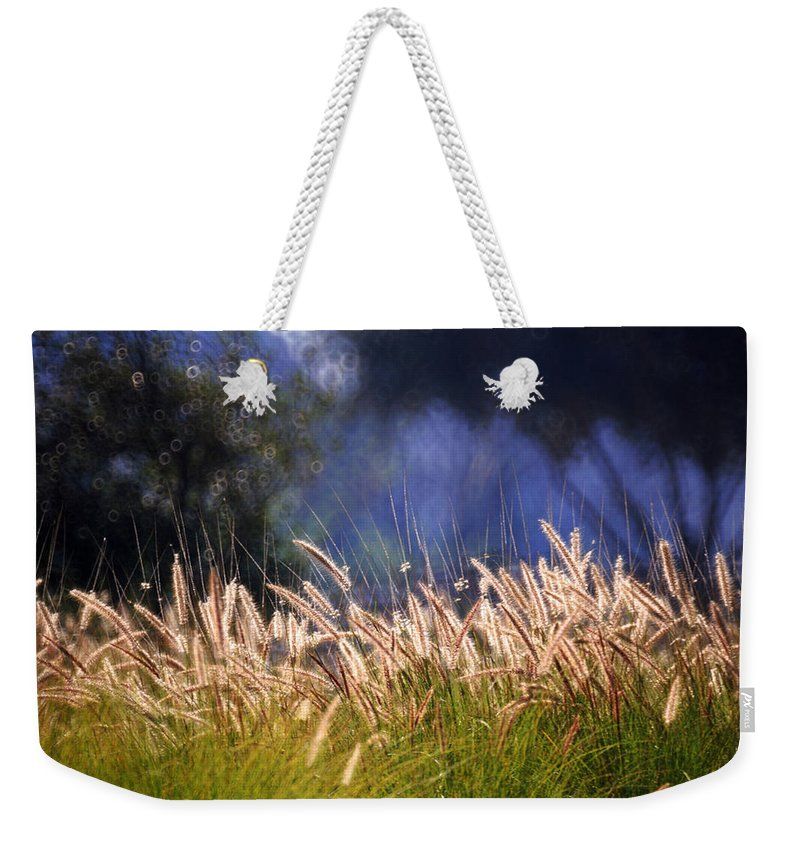 Nature Weekender Tote Bag featuring the photograph At The Rock Garden Tel Aviv by Dubi Roman