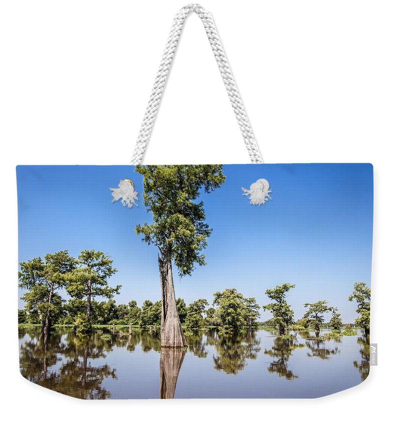 3 Nd Nature Weekender Tote Bag featuring the photograph Atchafalaya Cypress Tree by Gregory Daley MPSA