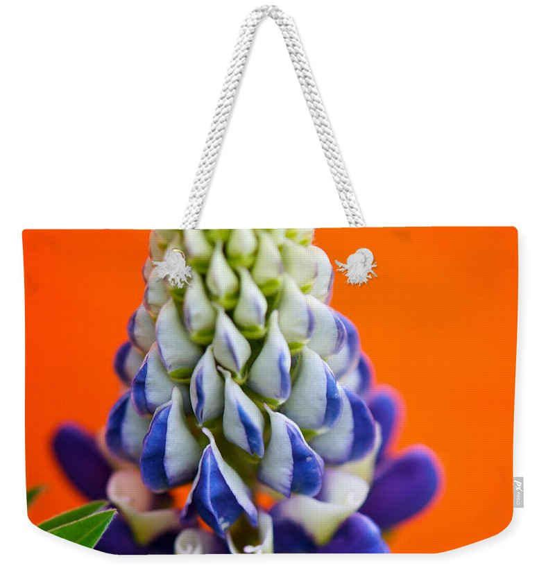 Interior Design Weekender Tote Bag featuring the photograph Attention Seeking by Lisa Knechtel
