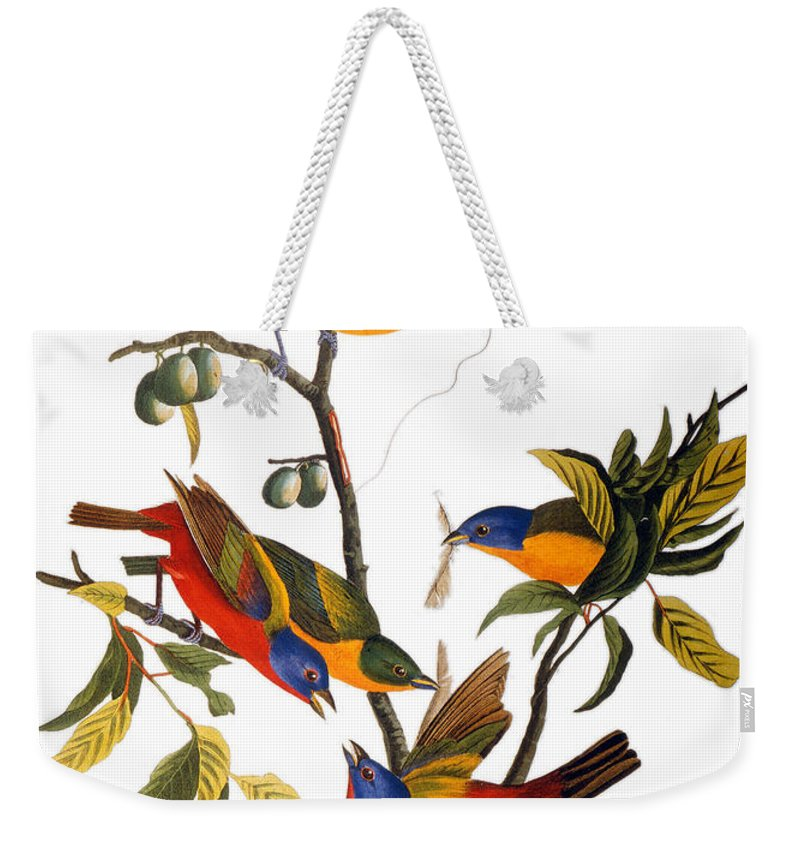 1827 Weekender Tote Bag featuring the photograph Bunting, 1827 by John James Audubon