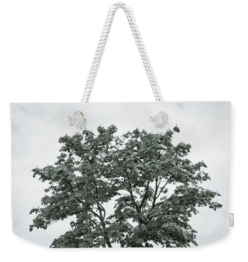 Tree Weekender Tote Bag featuring the photograph August In England by Andy Smy