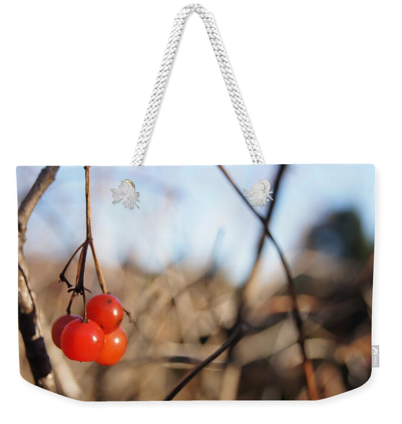 Weekender Tote Bag featuring the photograph Automn Fruits by Line Gagne
