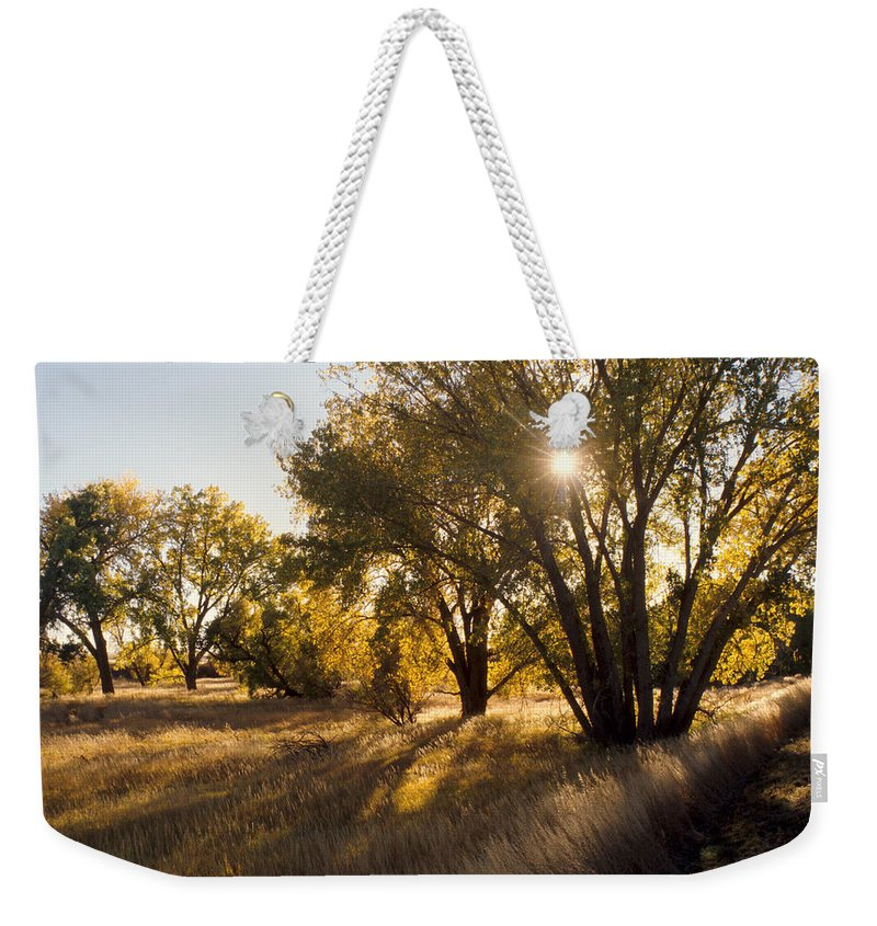 Fall Weekender Tote Bag featuring the photograph Autum Sunburst by Jerry McElroy