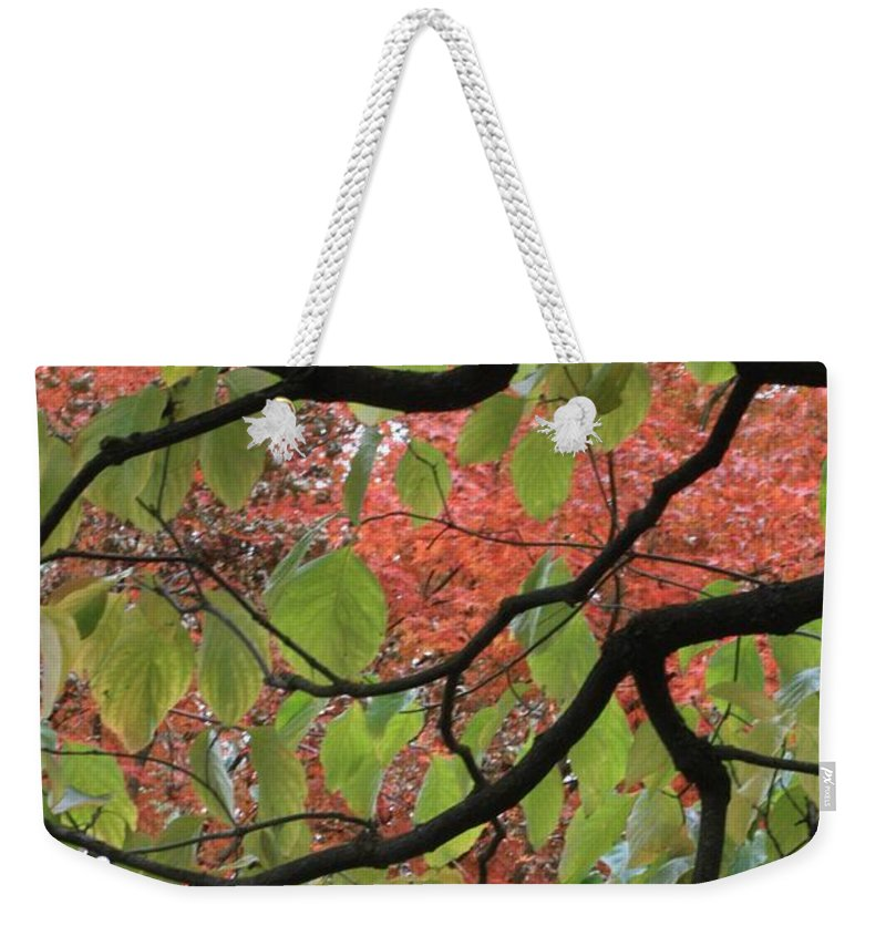 Fall Weekender Tote Bag featuring the photograph Autumn 7 by Carol Groenen