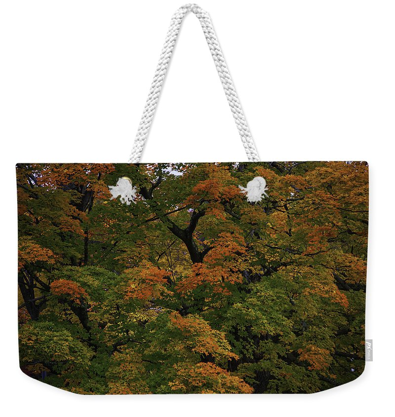 Autumn Weekender Tote Bag featuring the photograph Autumn Arrives by Garry Gay
