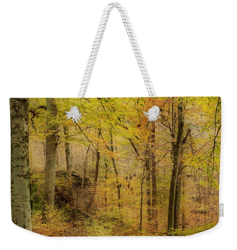 Rim Rock Weekender Tote Bag featuring the photograph Autumn At Rim Rock by Sandy Keeton