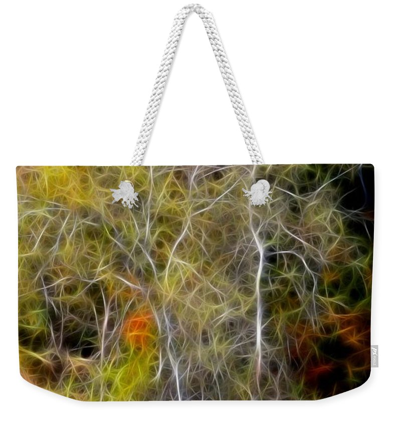 Photo Weekender Tote Bag featuring the photograph Autumn Birch by Deborah Benoit