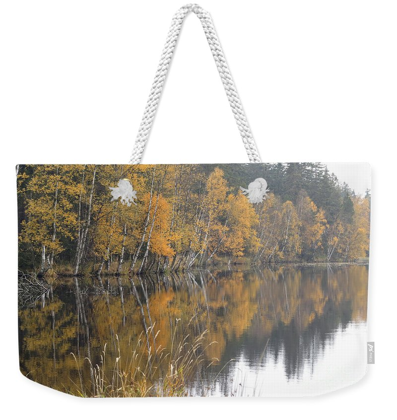 Autumn Weekender Tote Bag featuring the photograph Autumn Birches On The Shore Of Lake by Michal Boubin