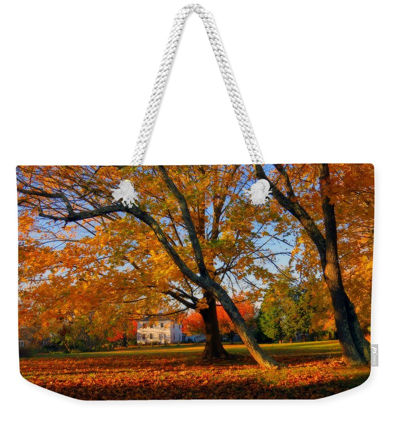 Autumn Weekender Tote Bag featuring the photograph Autumn Blaze by Dianne Cowen