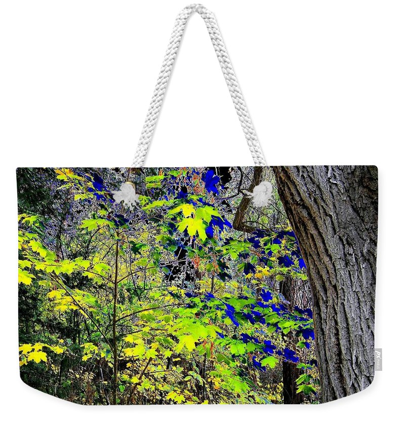 Surreal Weekender Tote Bag featuring the photograph Autumn Blue by Will Borden