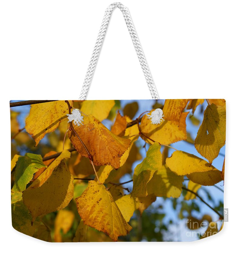 Autumn Weekender Tote Bag featuring the photograph Autumn by Carol Lynch