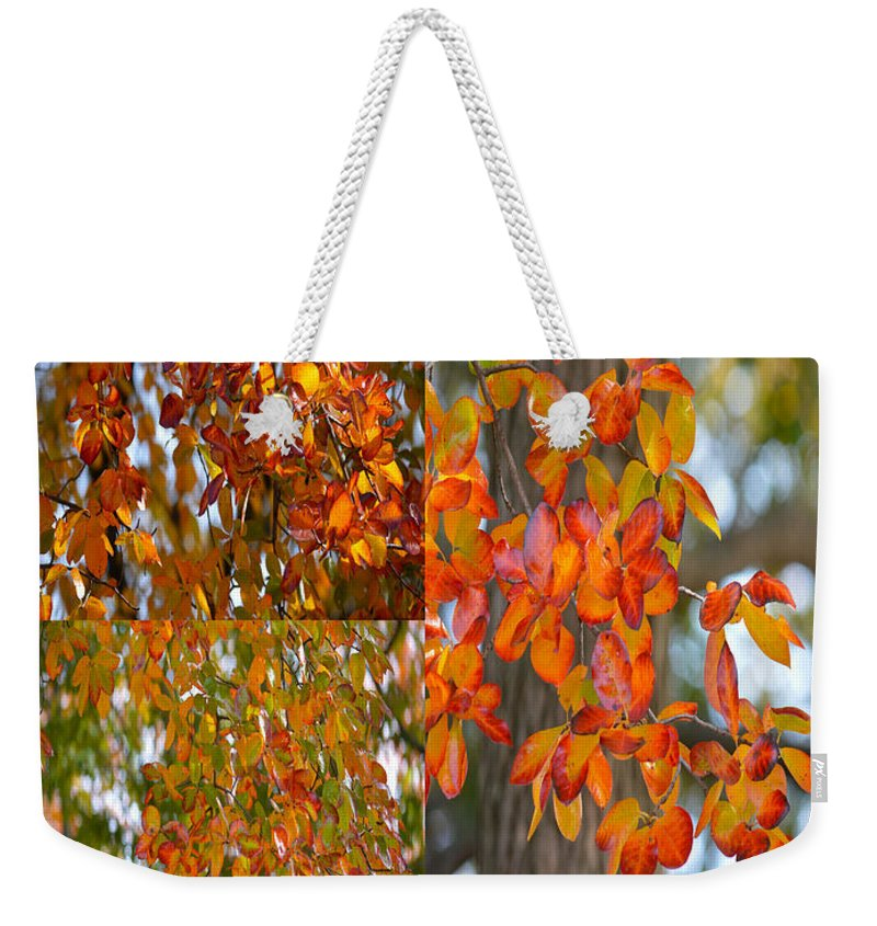 Art For Living Room Weekender Tote Bag featuring the photograph Autumn Collage by Sonali Gangane