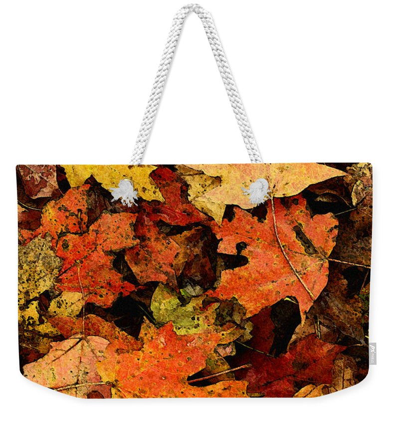 Autumn Weekender Tote Bag featuring the photograph Autumn Color by Ed A Gage