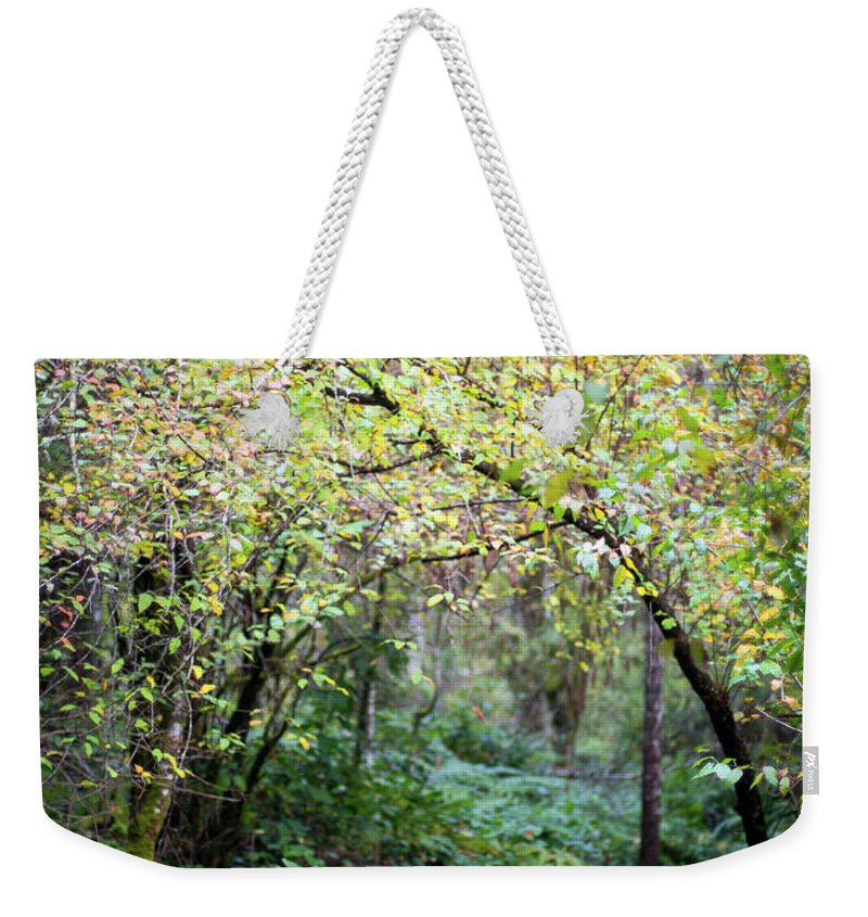 Nature Weekender Tote Bag featuring the photograph Autumn Colors In The Forest by Trance Blackman